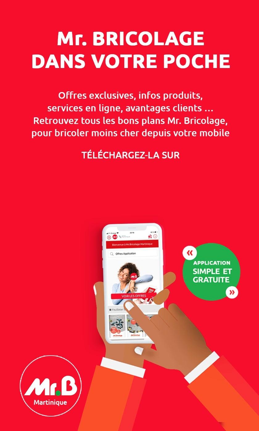 Mr Bricolage mobile slide application